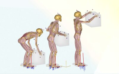 Latest Research and Data ensure improved Workplace Ergonomics